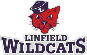 1982, 84, 86, 2004 Linfield Football Teams